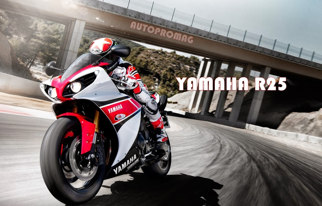 Yamaha Confirms Launch Of Their 250cc Bike In 2014 Autopromag