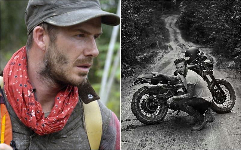 Beckham bike collection