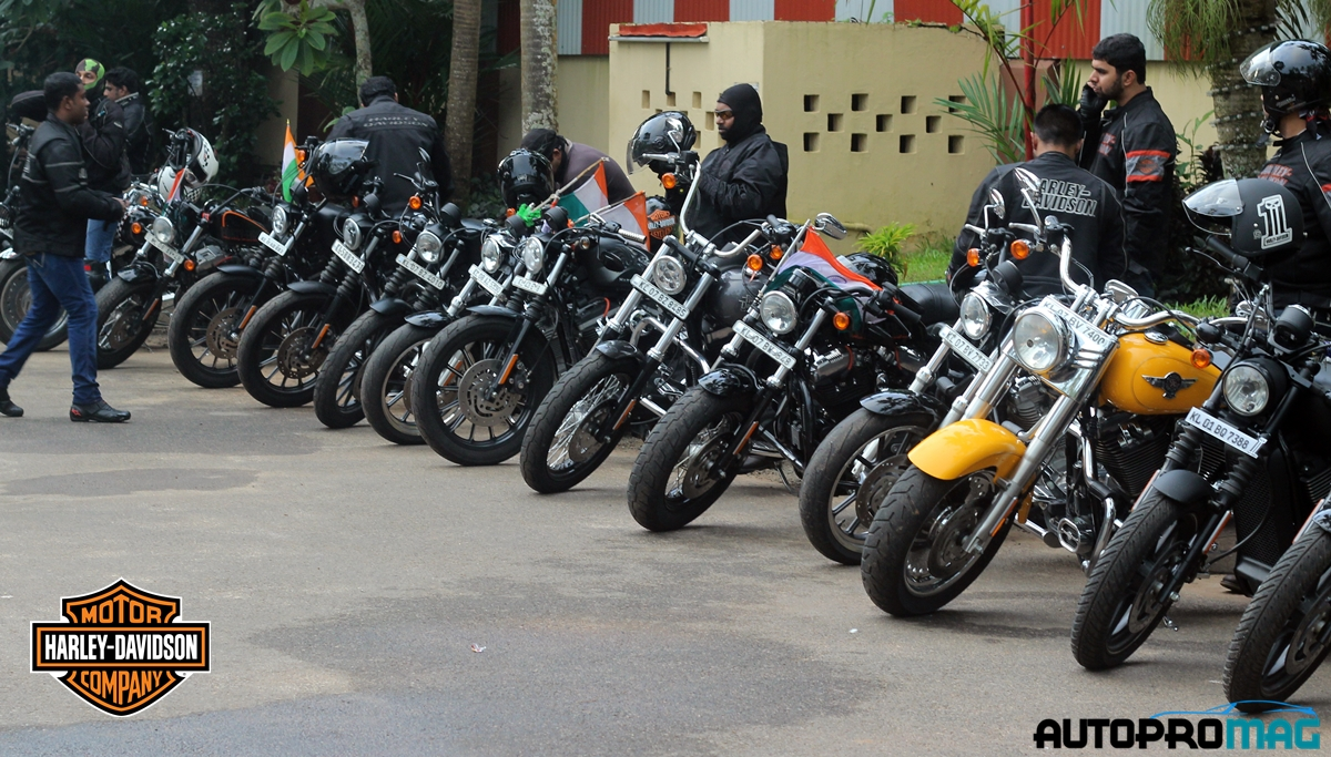 all harley bikes rally