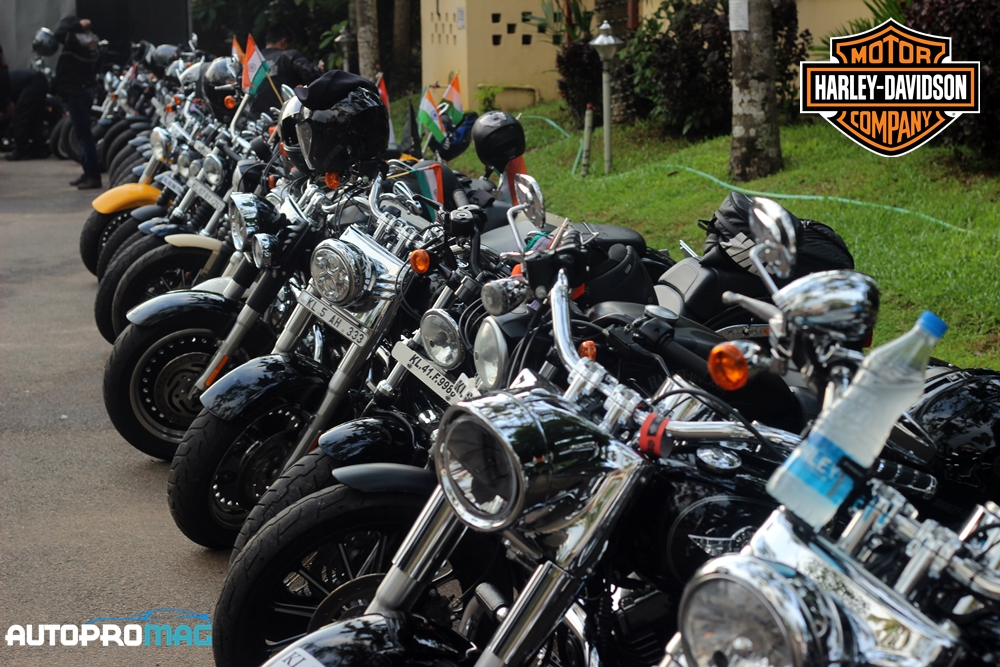all harley bikes freedom
