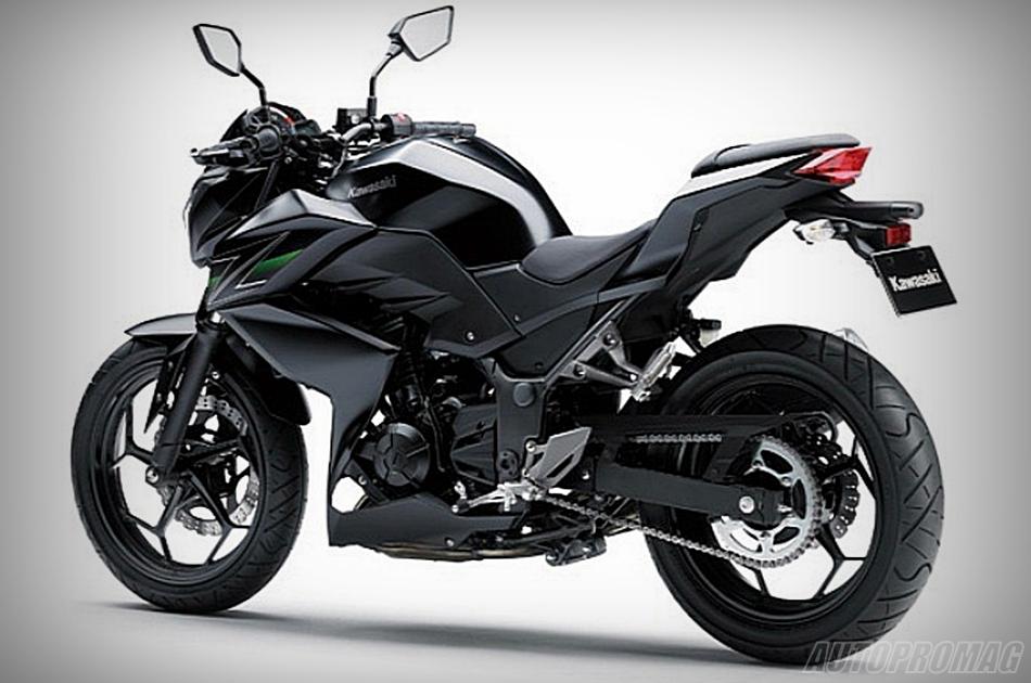 z250 rear black
