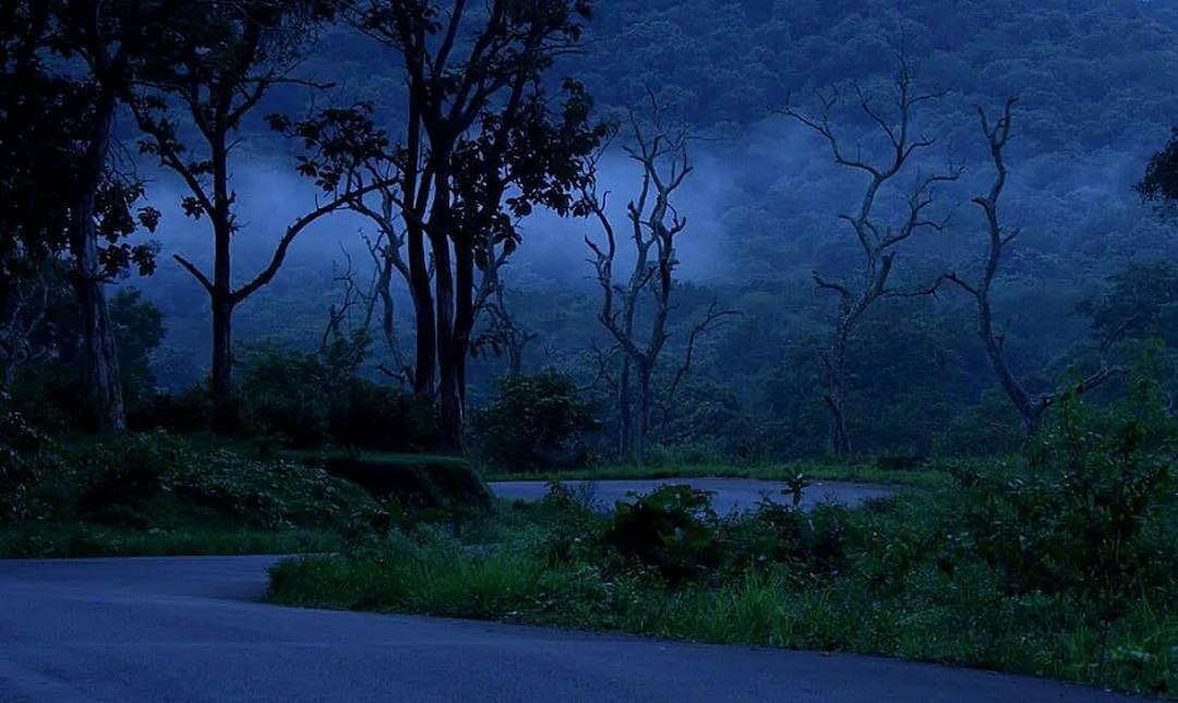 ghost in kerala road
