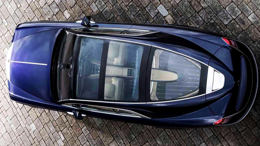 RR Sweptail top view