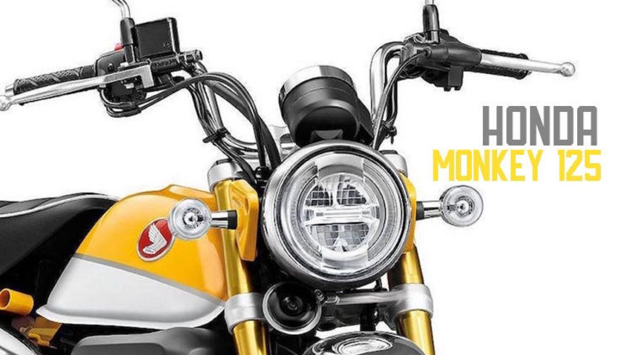 2019 Honda Monkey 125 Std Scrambler Cafe Revealed Autopromag