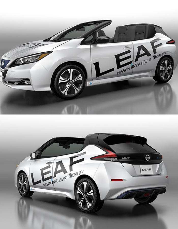 2019 Nissan Leaf Open Air