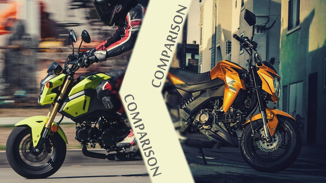 Grom Vs Z125 | Best Upcoming Cars Reviews